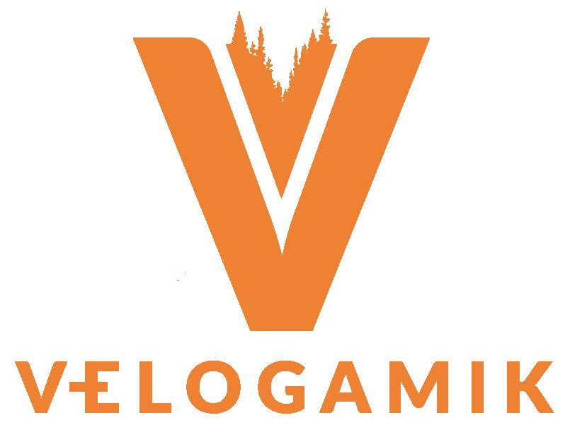 LOGO Vélogamik3